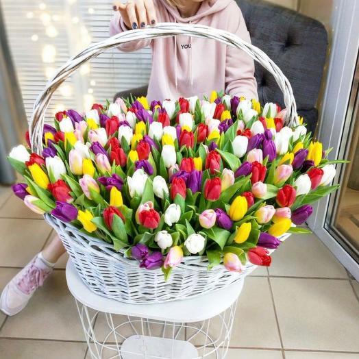 «Корзина тюльпанов»