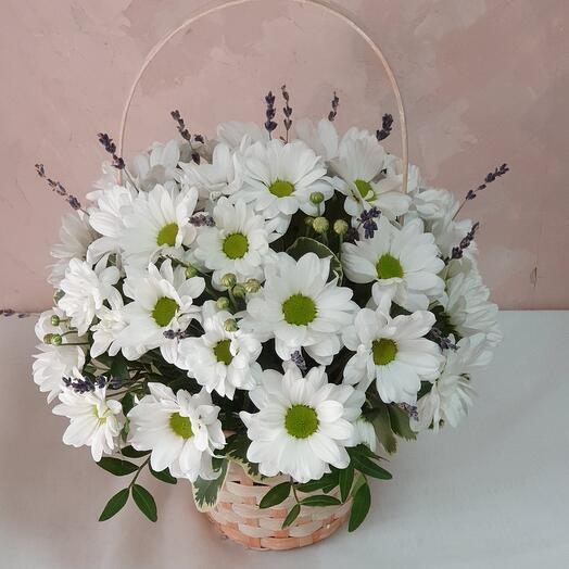 Basket with daisies and lavender
