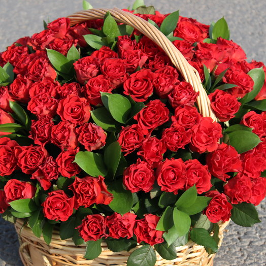 Basket of Fiery passion