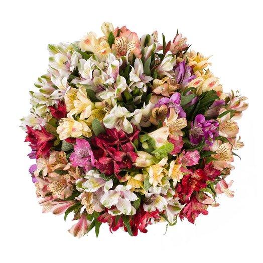Букет из альстрамерии микс: букеты цветов на заказ Flowwow