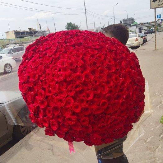 301 Красная роза 70см