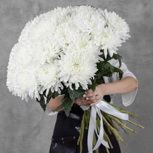 Белоснежная хризантема: букеты цветов на заказ Flowwow