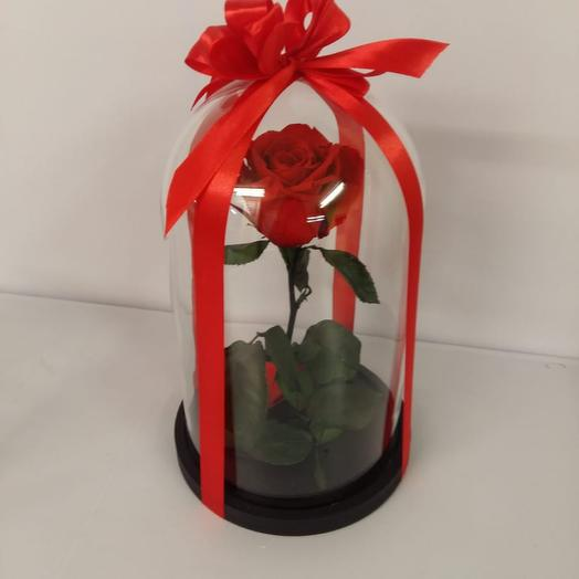 Вечная роза красная: букеты цветов на заказ Flowwow