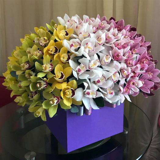 101 орхидея: букеты цветов на заказ Flowwow