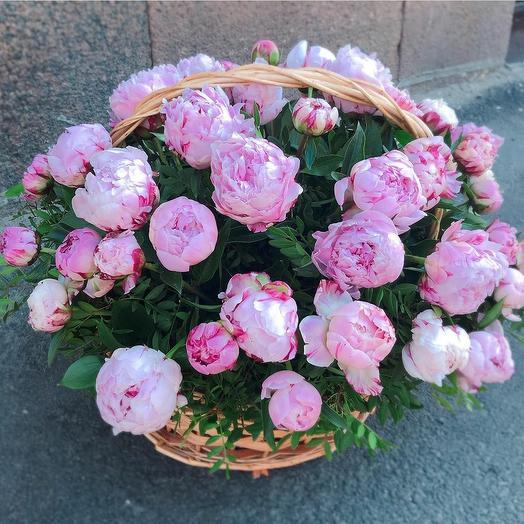 Ароматная корзина из 51 пиона: букеты цветов на заказ Flowwow