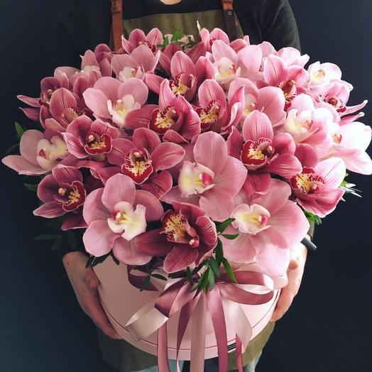 Орхидеи 💗 премиум