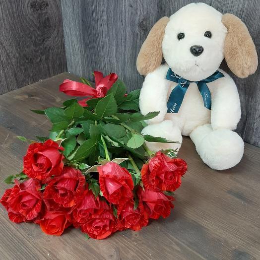 Розы и пес: букеты цветов на заказ Flowwow