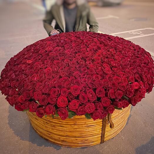 801 красная роза в корзине
