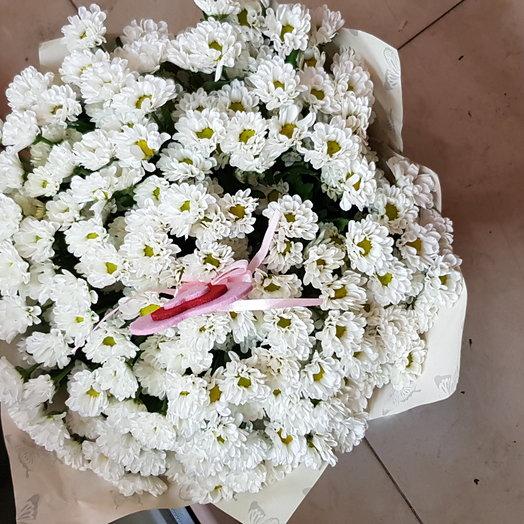 25 хризантем сантини: букеты цветов на заказ Flowwow