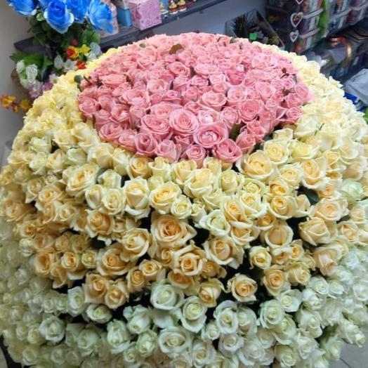 Корзина 801 роза: букеты цветов на заказ Flowwow