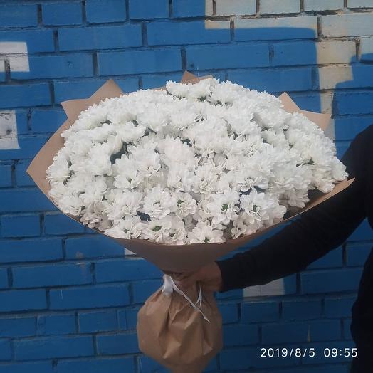 Букет из 49 белой хризантемы