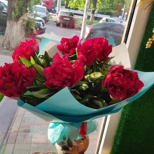 Пионы винного цвета: букеты цветов на заказ Flowwow