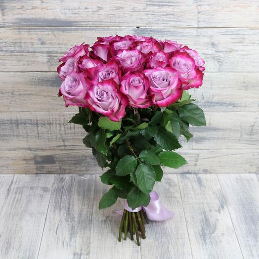 Роза Эквадор «Дип Перпл»