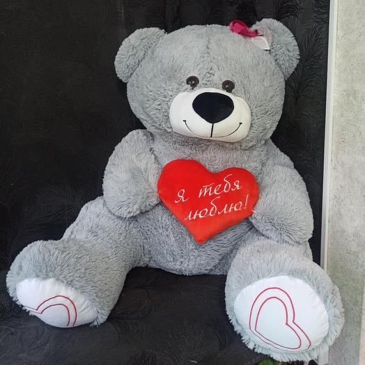 Медведь Софи