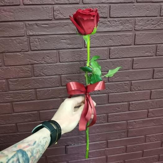 Алая роза Эквадор