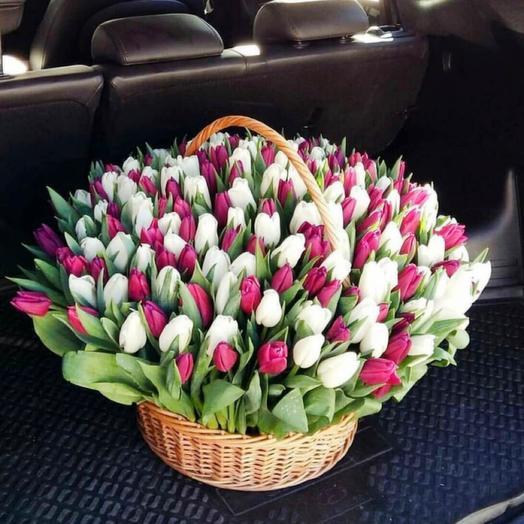 Тюльпаны в корзинк