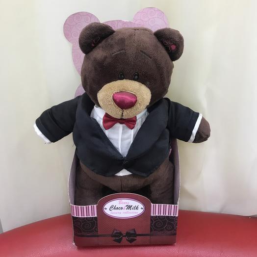 Teddy Bear in a tailcoat