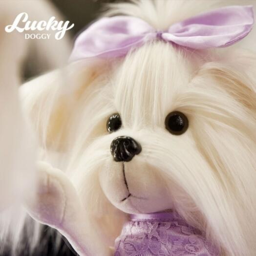 "Собака ""Lucky Doggy"""