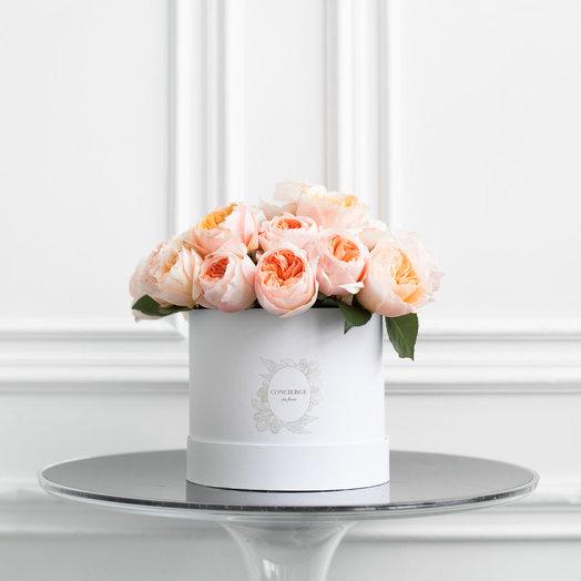Букет CLEMENCE в шляпной коробке Mini: букеты цветов на заказ Flowwow