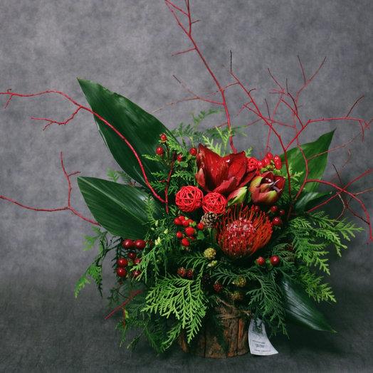 Тореадор в коре дерева: букеты цветов на заказ Flowwow