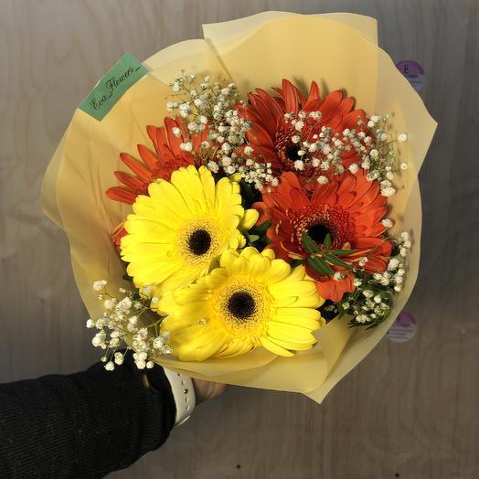 5 гербер солнышек: букеты цветов на заказ Flowwow