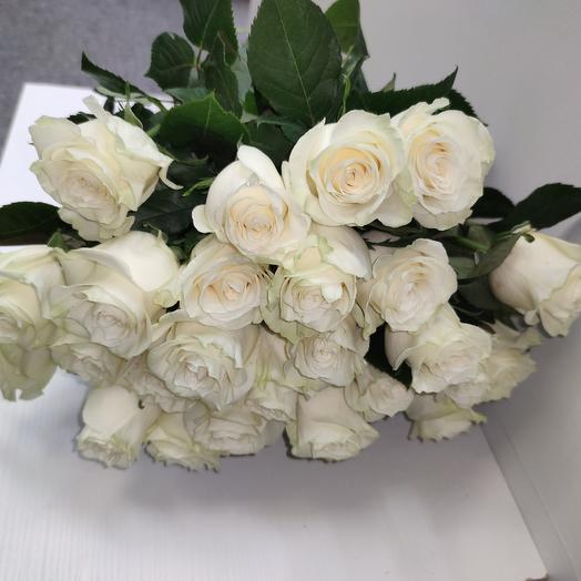 Роза Мондиал (белая): букеты цветов на заказ Flowwow