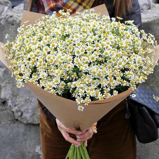 51 ромашка в упаковке: букеты цветов на заказ Flowwow