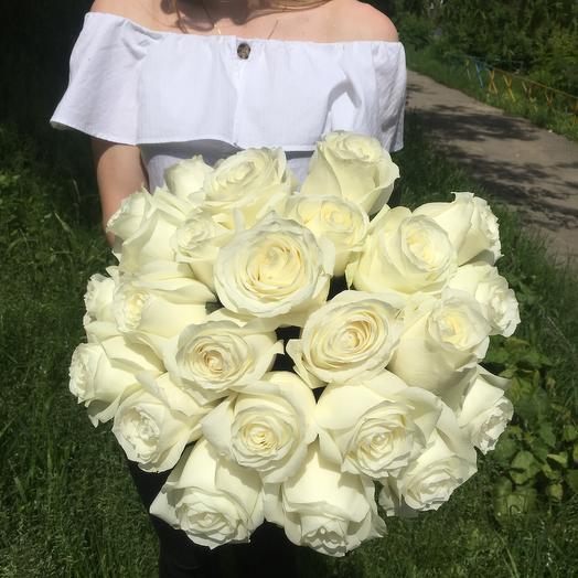 Белые розы Эквадор