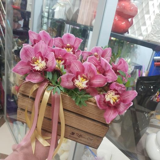 Орхидея в ящике