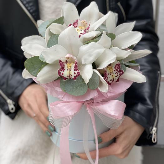 """Шляпная коробка с орхидеей """"Муза"""""""