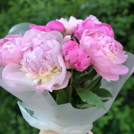 Букет из розовых 9 пионов