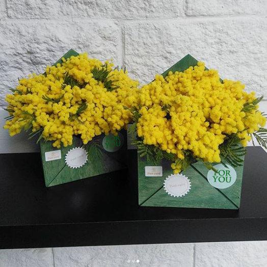 Конверт с мимозой: букеты цветов на заказ Flowwow