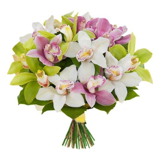 19 Радужных орхидей: букеты цветов на заказ Flowwow