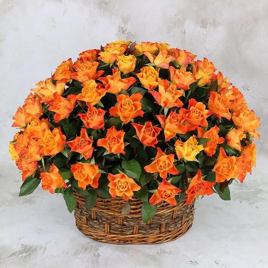 101 оранжевая роза в корзине