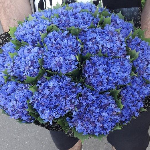 Васильки: букеты цветов на заказ Flowwow