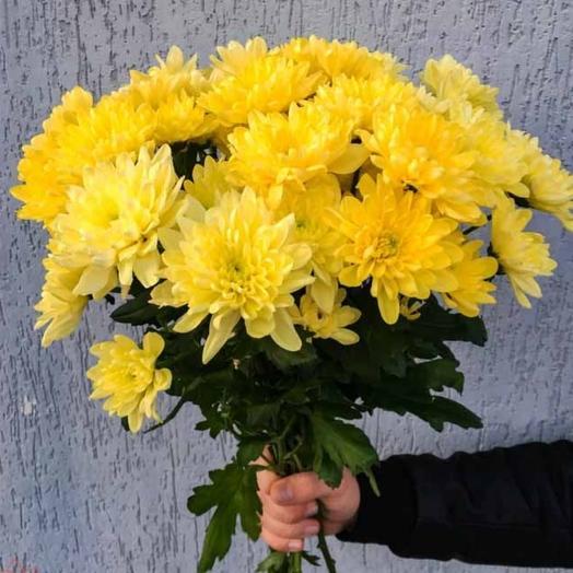 Хризантема жёлтая: букеты цветов на заказ Flowwow