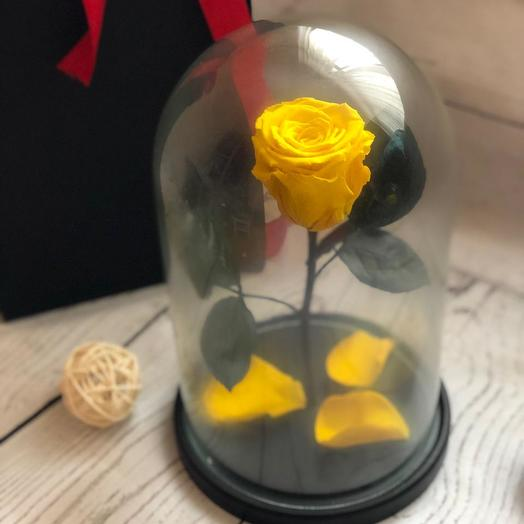 Живая жёлтая роза в колбе: букеты цветов на заказ Flowwow