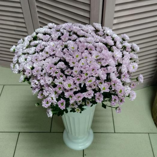 Букет из Сантини ромашка 25 шт: букеты цветов на заказ Flowwow