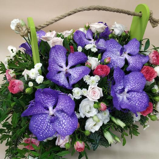 Elegant box with Orchid Vanda Premium: flowers to order Flowwow