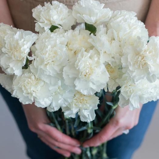 Букет из белых гвоздик: букеты цветов на заказ Flowwow
