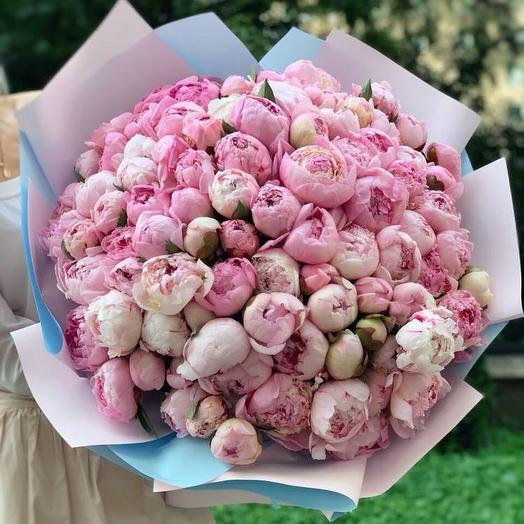 101 пион🔥: букеты цветов на заказ Flowwow