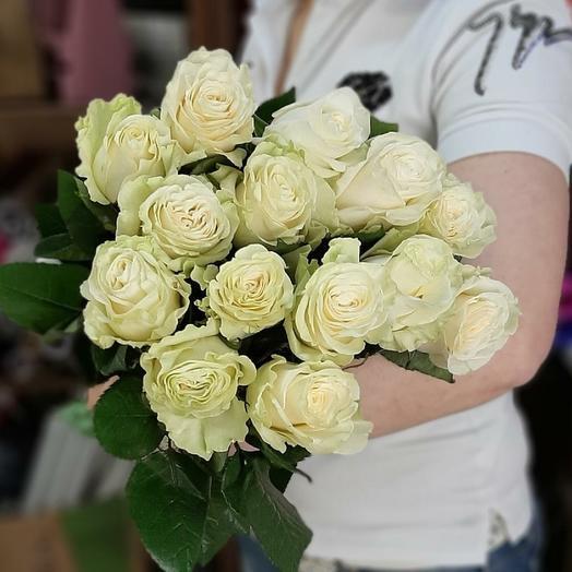 Белые розы сорта мондиаль