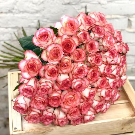 51 роза Эмилия