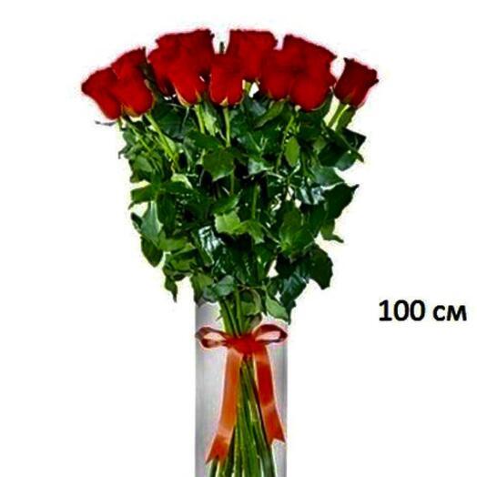 1m roses