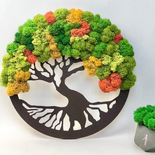 Дерево жизни Красная поляна