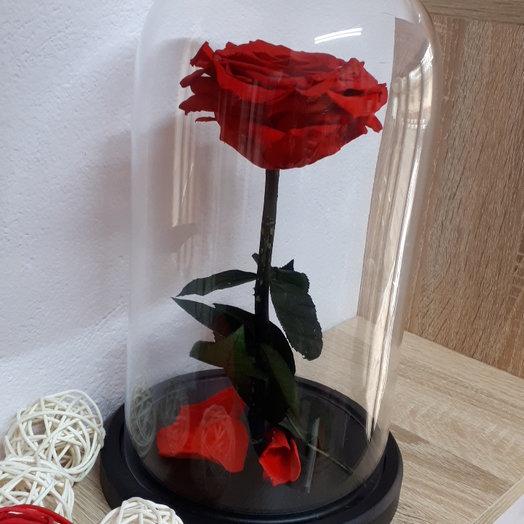 Роза экстра в колбе