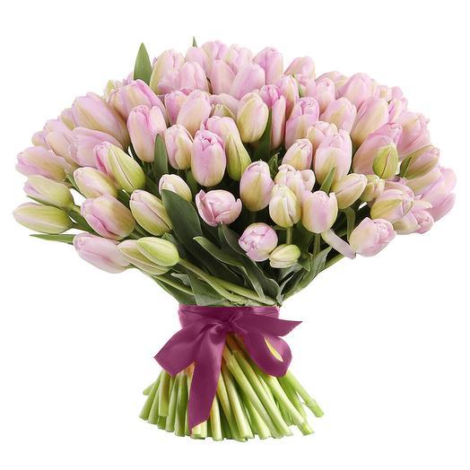 Букет из 101 нежнорозового тюльпана: букеты цветов на заказ Flowwow