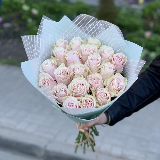 21 розовая роза 50см в упаковке