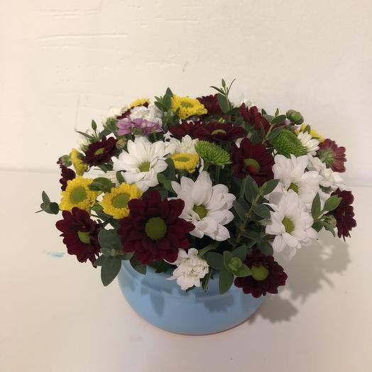Композиция в керамическом горшочке: букеты цветов на заказ Flowwow
