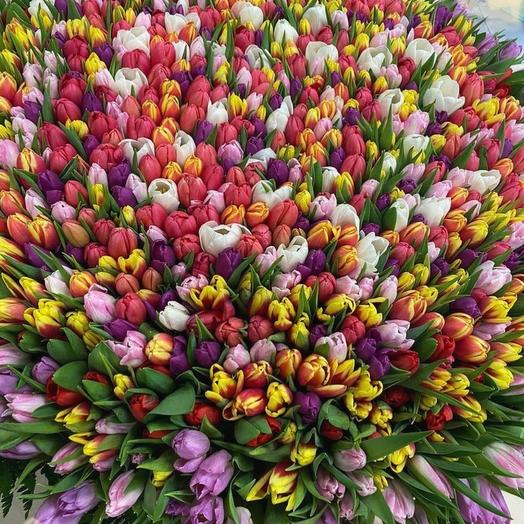 1001 тюльпан в корзине: букеты цветов на заказ Flowwow